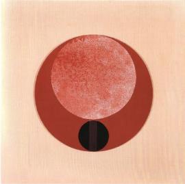 Ermanno Leinardi, Rosso-Gruppo Transazionale, 1965
