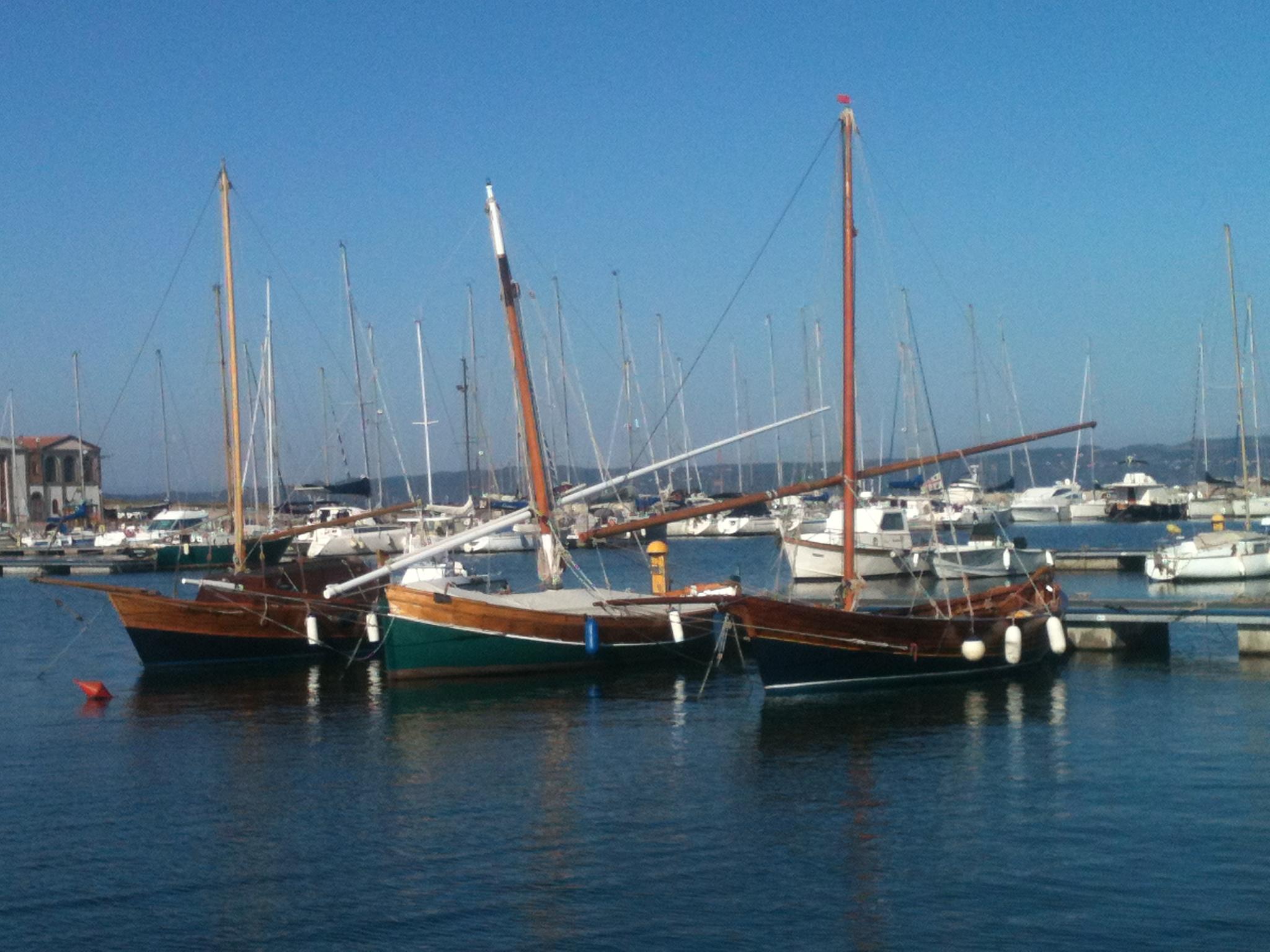 Barche a vela latina